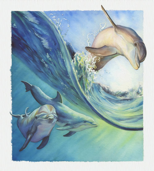 dolphin-illustration-2